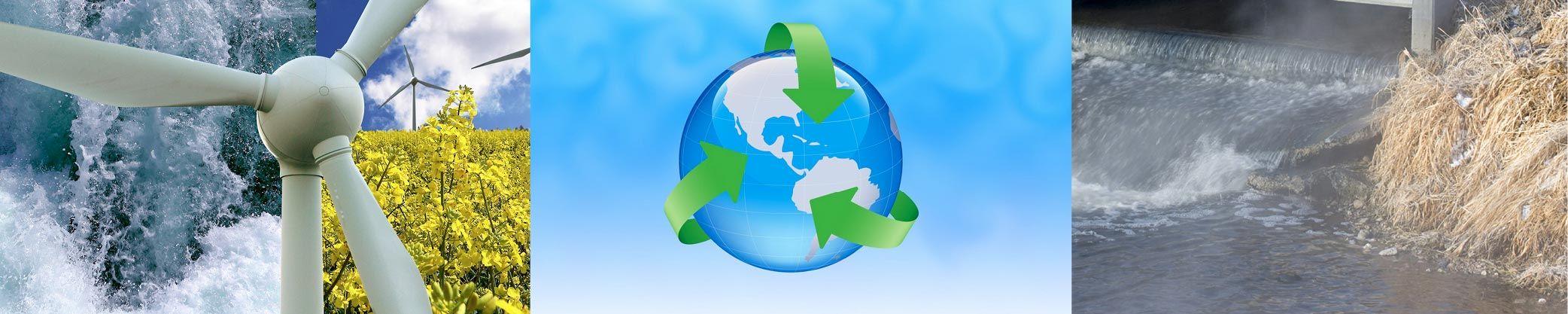 Environmental-Coll